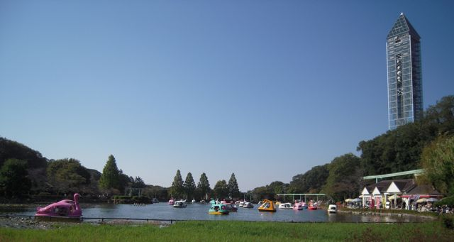 [Lake with swan boats, helicopter boats, jet boats, koala boats... Sky Tower at right]
